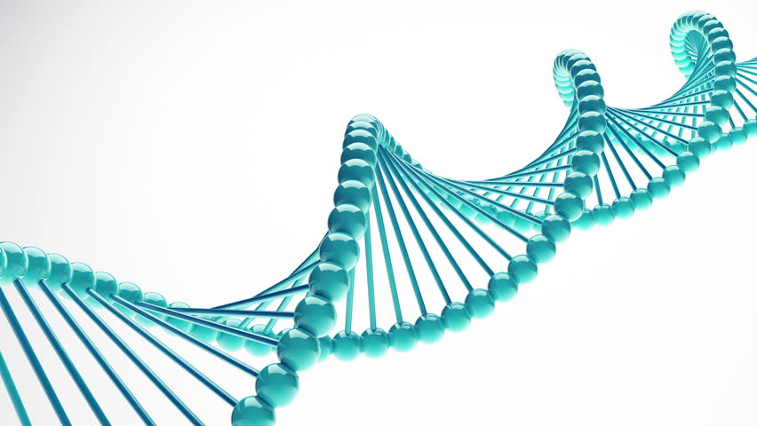 DNA Tests for Heritage – What Are The Benefits?